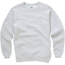 Softstyle Sweatshirt